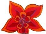 Garden red flower